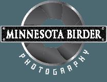 Minnesota Birder